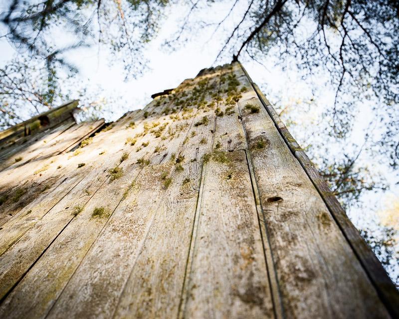 Tornet på mossen II