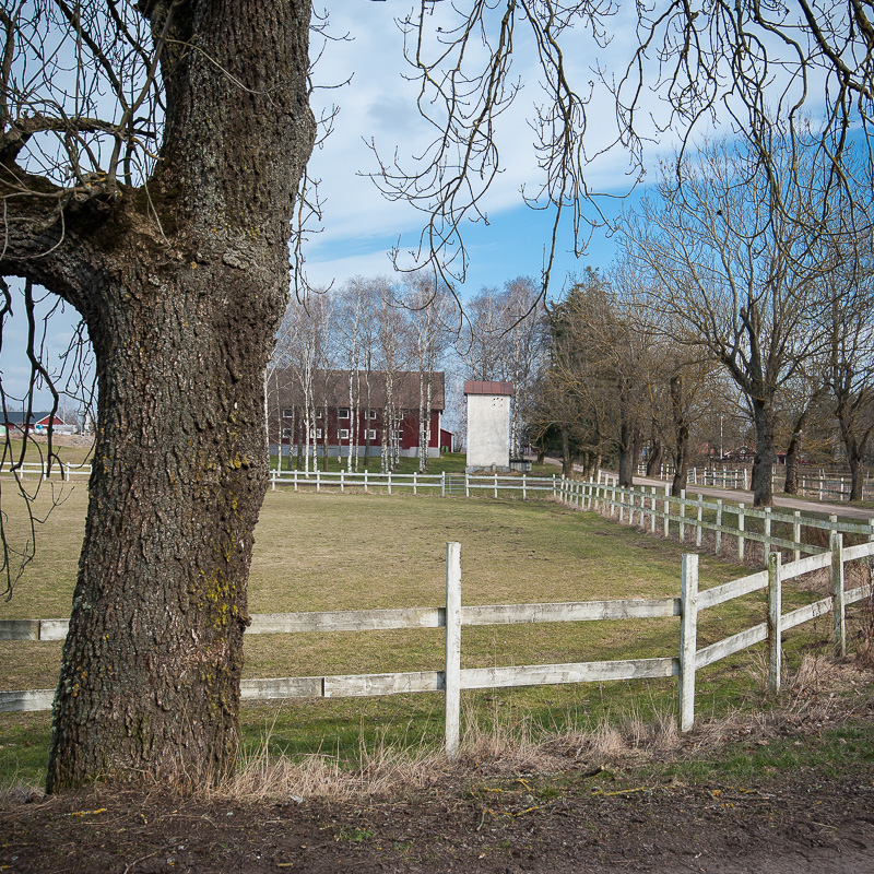 Linköping VII